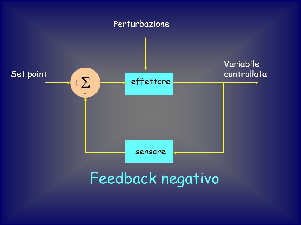 Set point sensore Variabile controllata effettore + - Perturbazione Feedback negativo