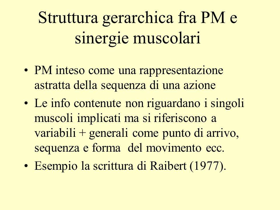 Struttura gerarchica fra PM e sinergie muscolari PM inteso come una rappresentazione astratta della sequenza di una azione Le info contenute non rigua