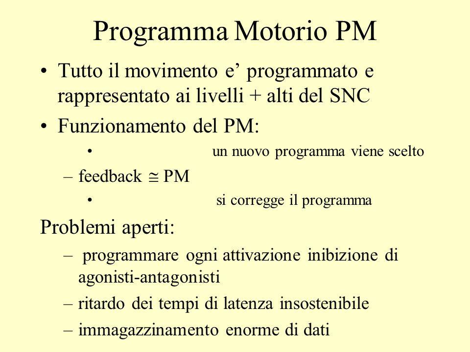 Programma Motorio PM Tutto il movimento e programmato e rappresentato ai livelli + alti del SNC Funzionamento del PM: un nuovo programma viene scelto