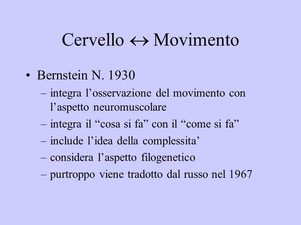 Cervello Movimento Bernstein N.