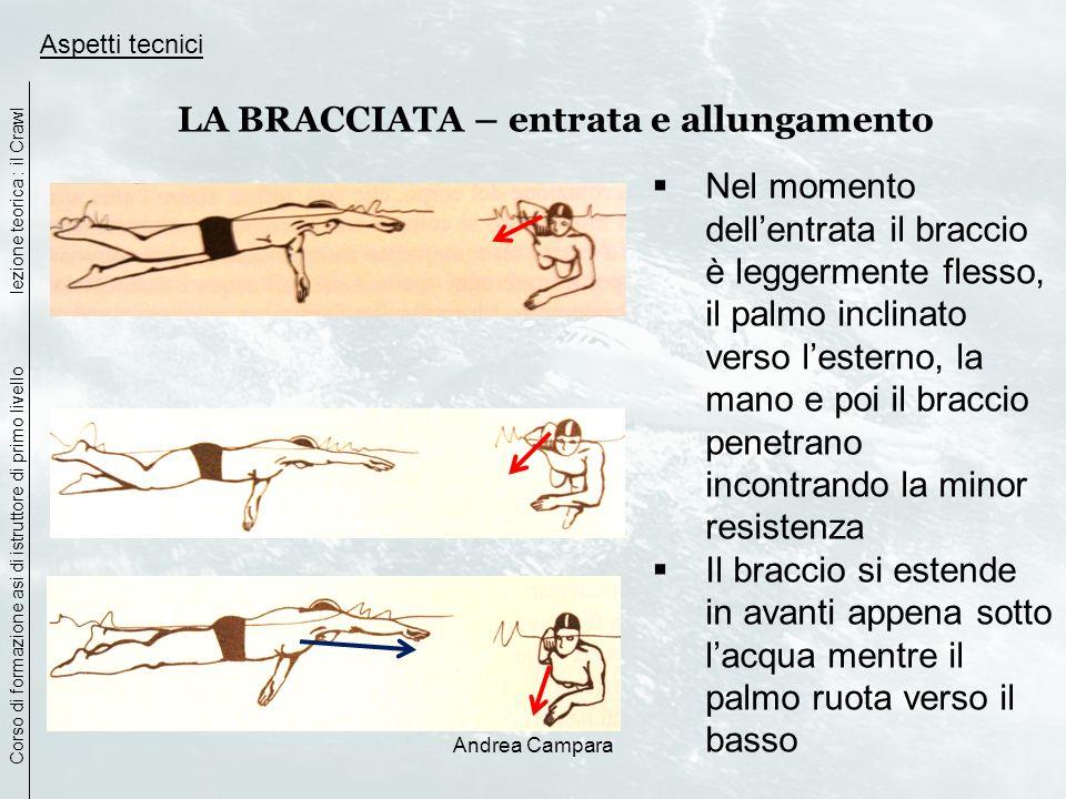 Andrea Campara Aspetti tecnici LA BRACCIATA – entrata e allungamento Nel momento dellentrata il braccio è leggermente flesso, il palmo inclinato verso