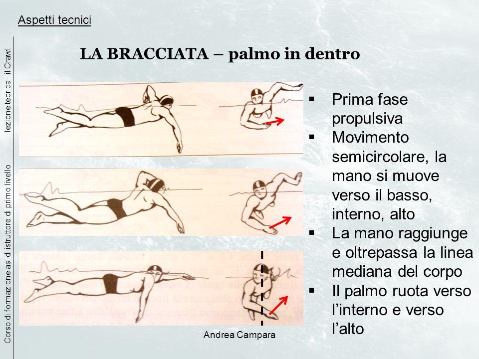 Andrea Campara Aspetti tecnici Corso di formazione asi di istruttore di primo livello lezione teorica : il Crawl LA BRACCIATA – palmo in dentro Prima