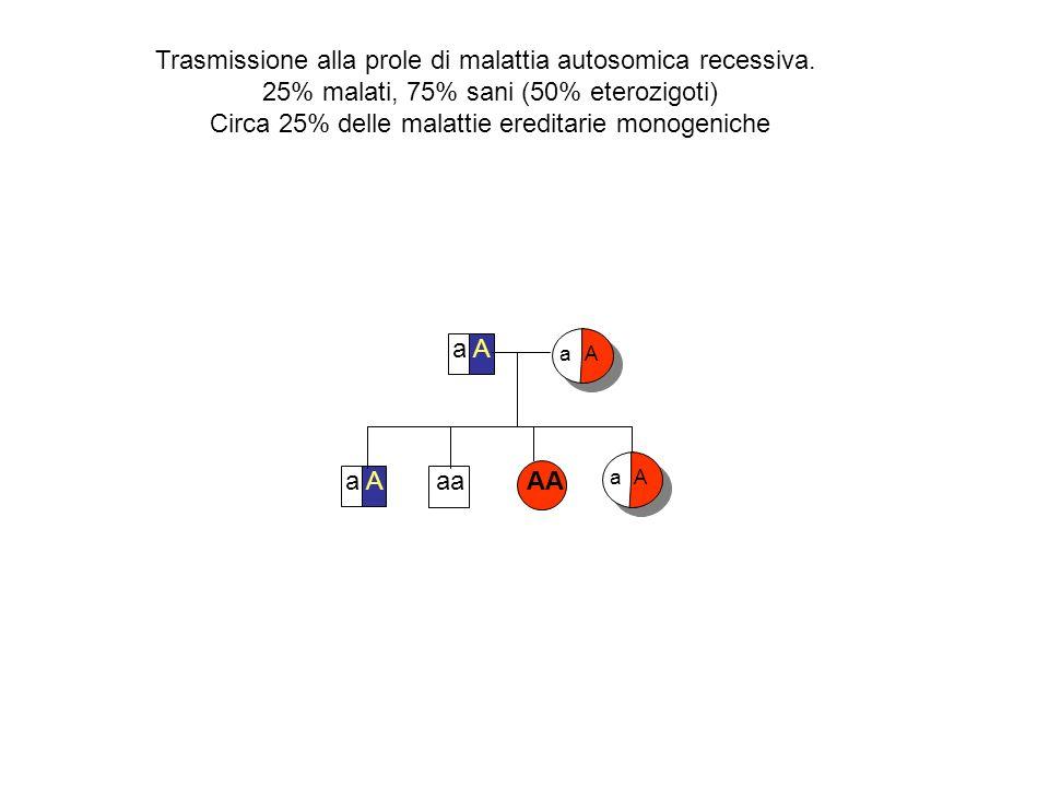 Trasmissione alla prole di malattia autosomica recessiva. 25% malati, 75% sani (50% eterozigoti) Circa 25% delle malattie ereditarie monogeniche a A a