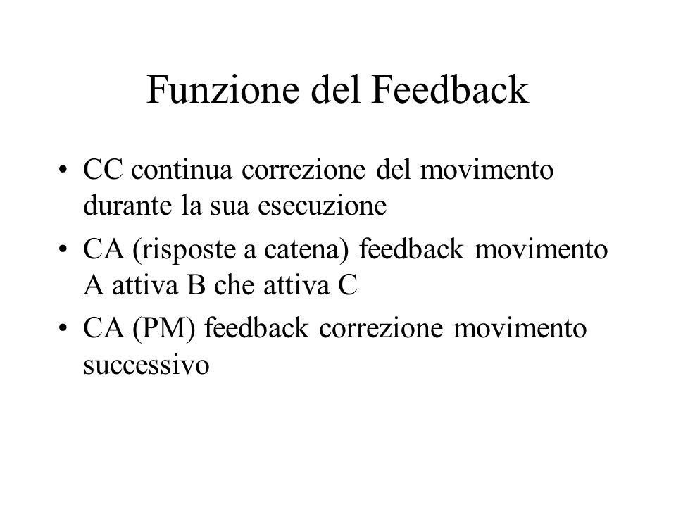 Funzione del Feedback CC continua correzione del movimento durante la sua esecuzione CA (risposte a catena) feedback movimento A attiva B che attiva C