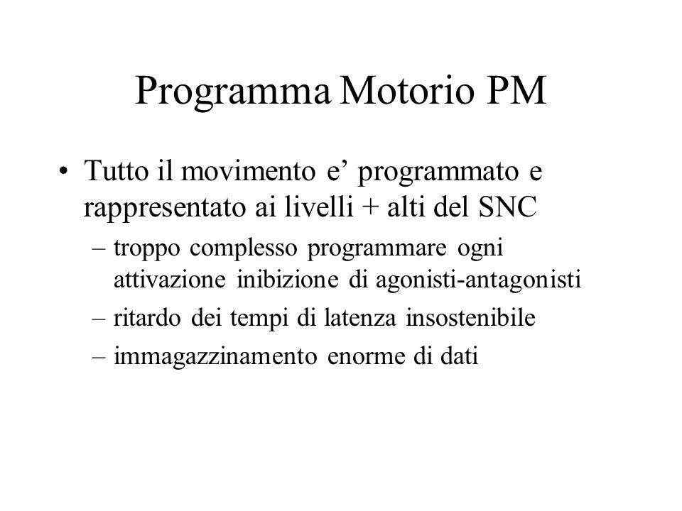 Programma Motorio PM Tutto il movimento e programmato e rappresentato ai livelli + alti del SNC –troppo complesso programmare ogni attivazione inibizi