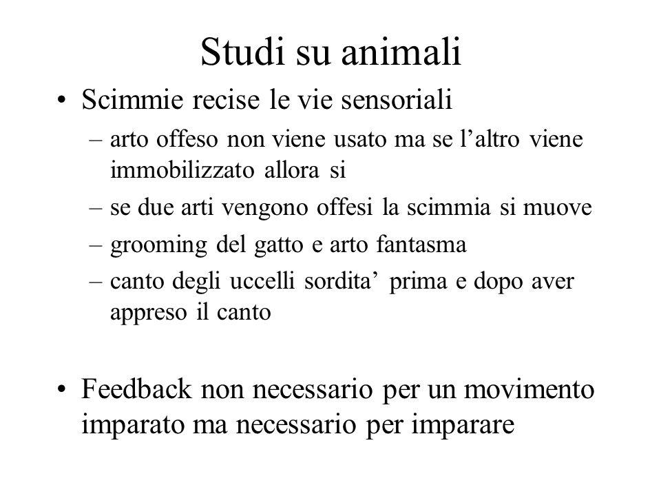 Studi su animali Scimmie recise le vie sensoriali –arto offeso non viene usato ma se laltro viene immobilizzato allora si –se due arti vengono offesi