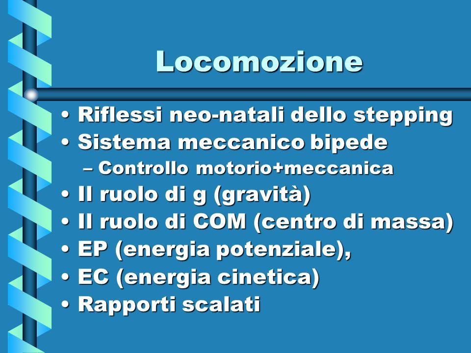 Locomozione Riflessi neo-natali dello steppingRiflessi neo-natali dello stepping Sistema meccanico bipedeSistema meccanico bipede –Controllo motorio+m