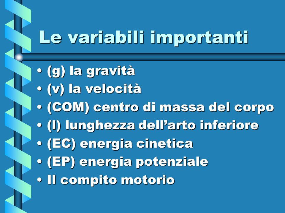 Le variabili importanti (g) la gravità(g) la gravità (v) la velocità(v) la velocità (COM) centro di massa del corpo(COM) centro di massa del corpo (l)