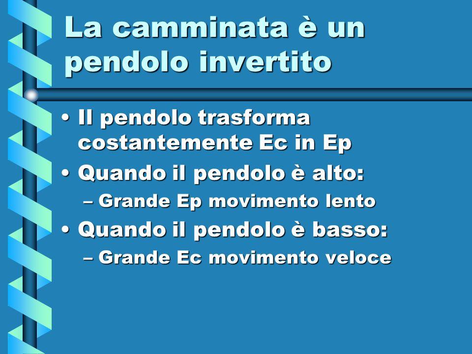 La camminata è un pendolo invertito Il pendolo trasforma costantemente Ec in EpIl pendolo trasforma costantemente Ec in Ep Quando il pendolo è alto:Qu