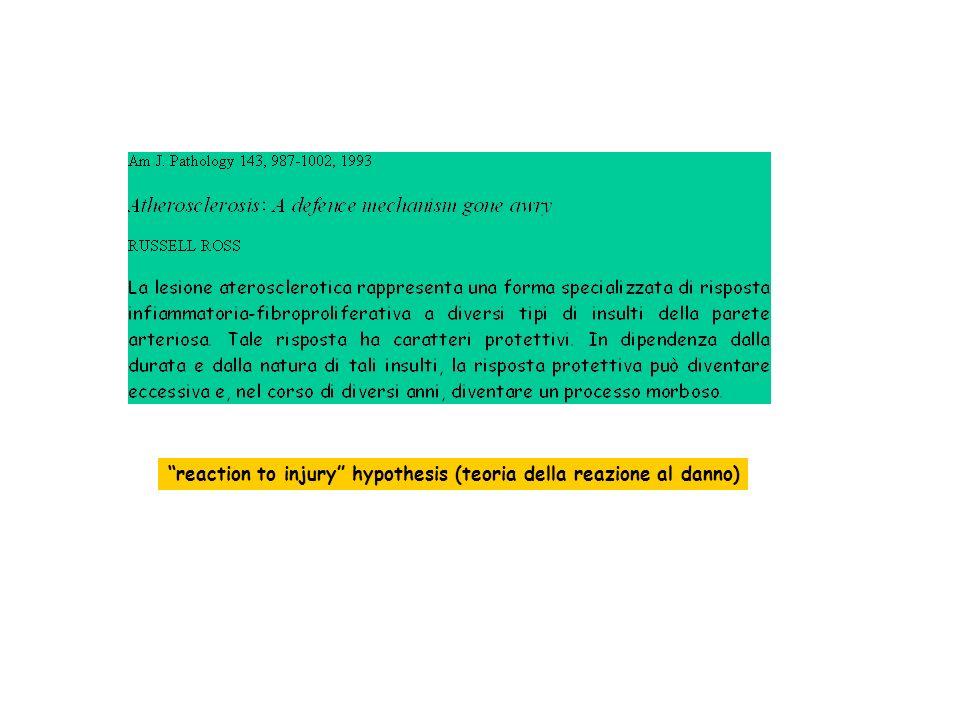 fegato VLDL/IDL CETP* LDL APO-A LCAT Lecitina Colesterolo Acil Transferasi HDL CETP APO-A -HDL pre- -HDL APO-E APO-A PLTP Tessuti periferici * Colesteryl Esther Transfer Protein