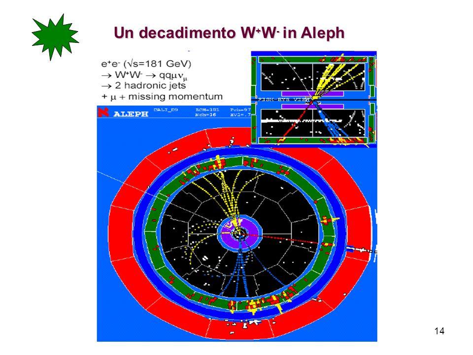 14 Un decadimento W + W - in Aleph