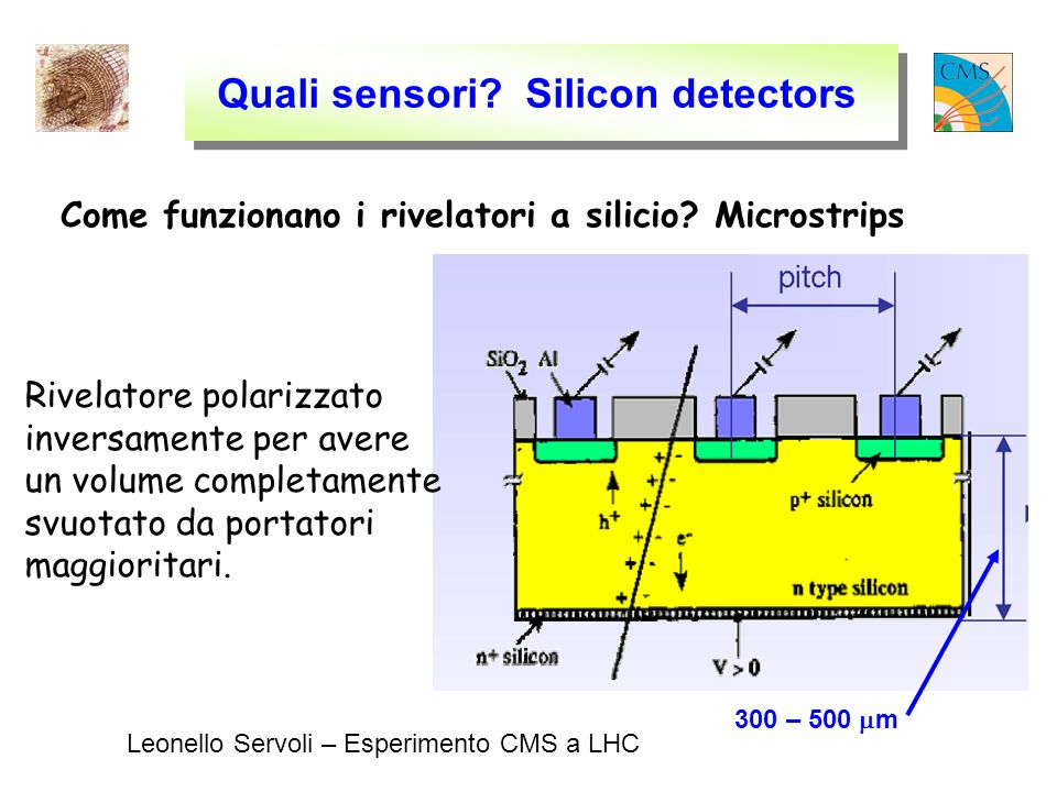 Leonello Servoli – Esperimento CMS a LHC Quali sensori.