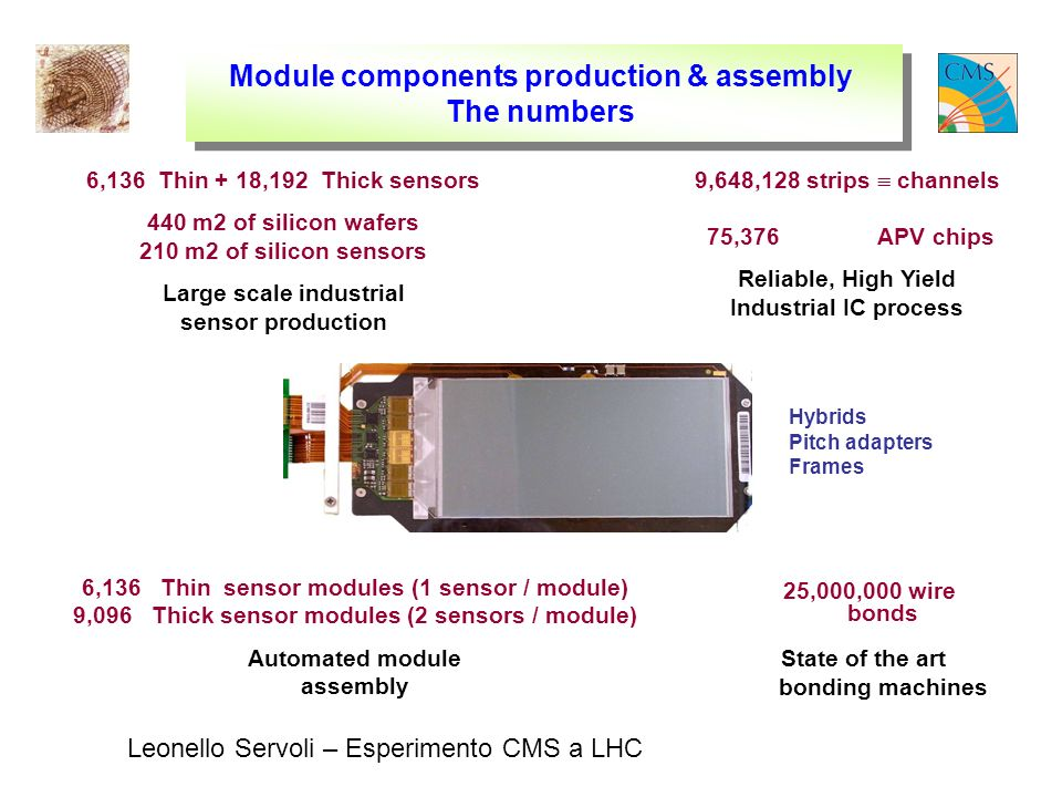 Leonello Servoli – Esperimento CMS a LHC Module components production & assembly The numbers 25,000,000 wire bonds State of the art bonding machines 6,136 Thin + 18,192 Thick sensors 440 m2 of silicon wafers 210 m2 of silicon sensors Large scale industrial sensor production 9,648,128 strips channels 75,376 APV chips Reliable, High Yield Industrial IC process 6,136 Thin sensor modules (1 sensor / module) 9,096 Thick sensor modules (2 sensors / module) Automated module assembly Hybrids Pitch adapters Frames