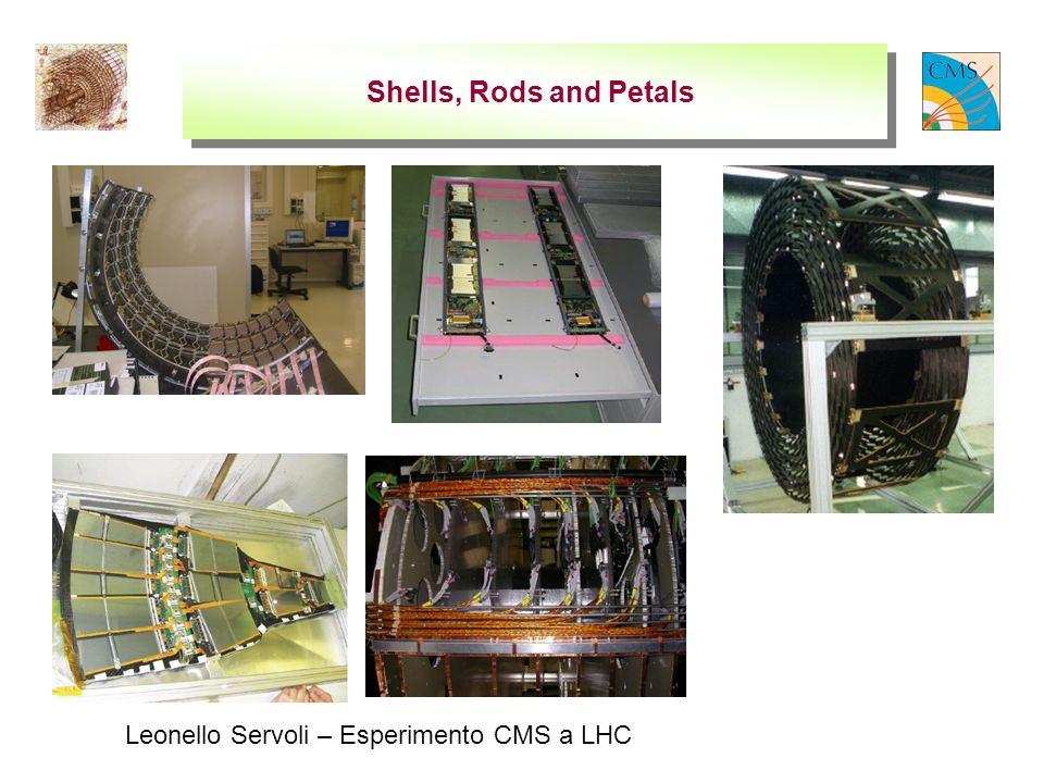 Leonello Servoli – Esperimento CMS a LHC Shells, Rods and Petals