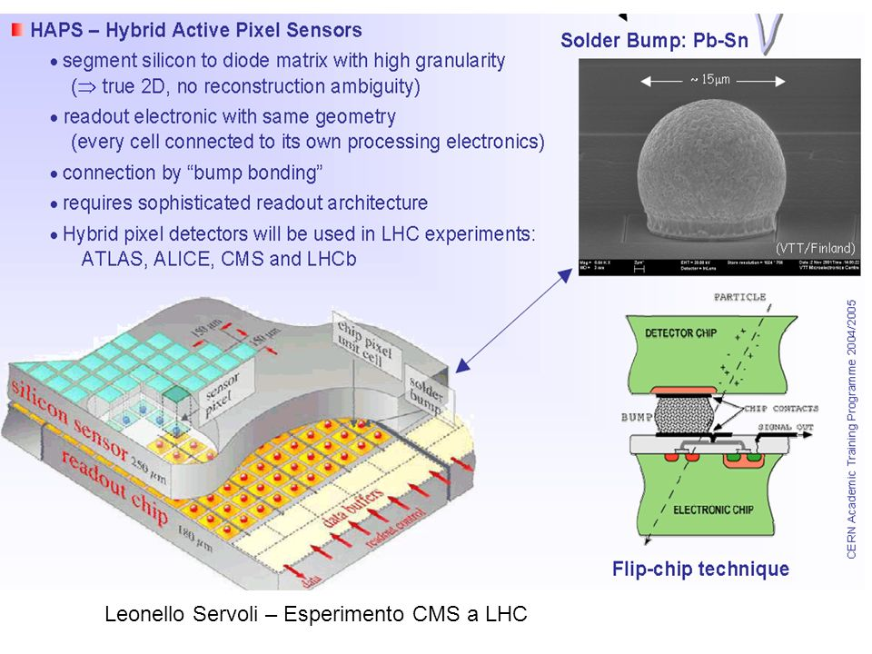 Leonello Servoli – Esperimento CMS a LHC Quali sensori Silicon detectors