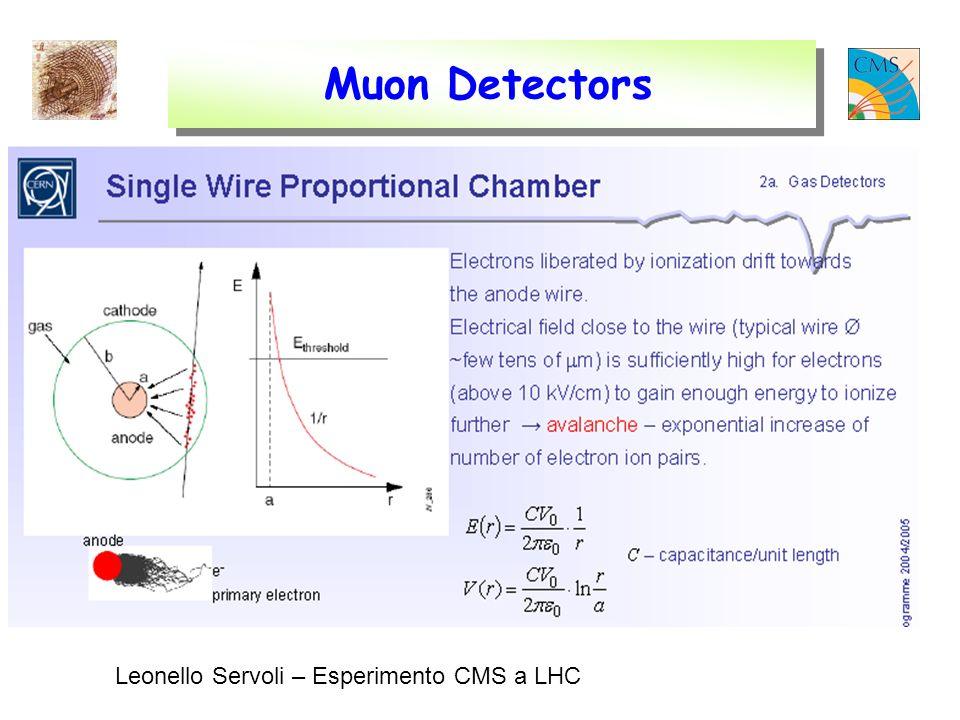 Muon Detectors