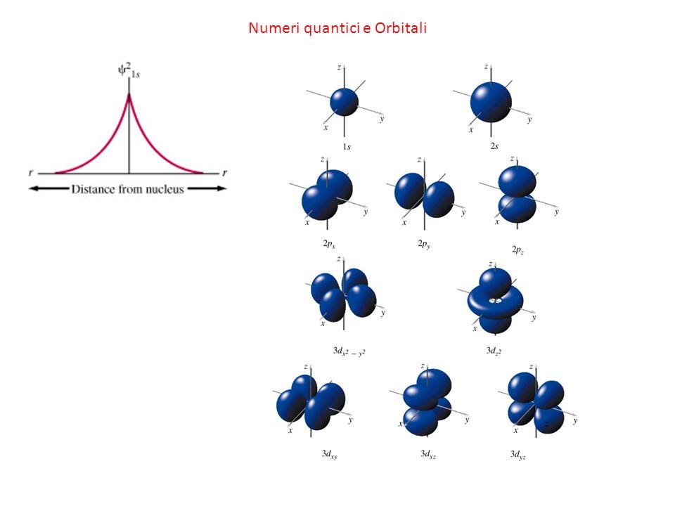 Numeri quantici e Orbitali