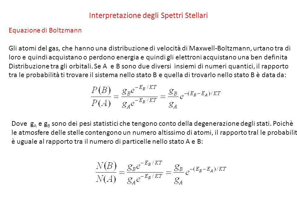 Interpretazione degli Spettri Stellari Equazione di Boltzmann Gli atomi del gas, che hanno una distribuzione di velocità di Maxwell-Boltzmann, urtano