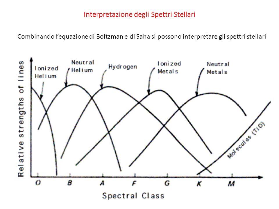 Interpretazione degli Spettri Stellari Combinando lequazione di Boltzman e di Saha si possono interpretare gli spettri stellari