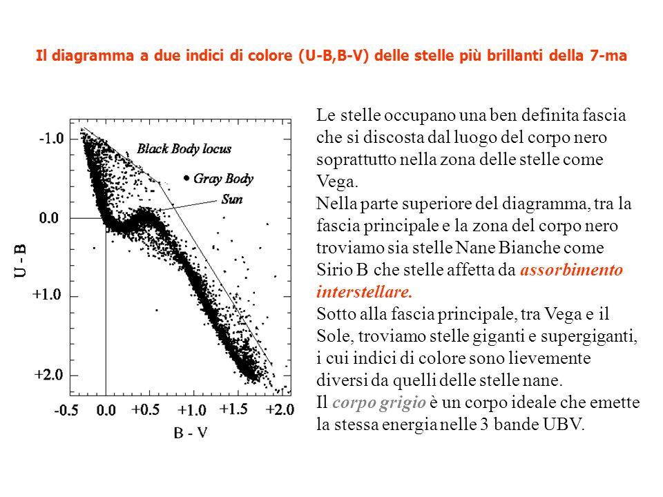 Il diagramma a due indici di colore (U-B,B-V) delle stelle più brillanti della 7-ma Le stelle occupano una ben definita fascia che si discosta dal luo