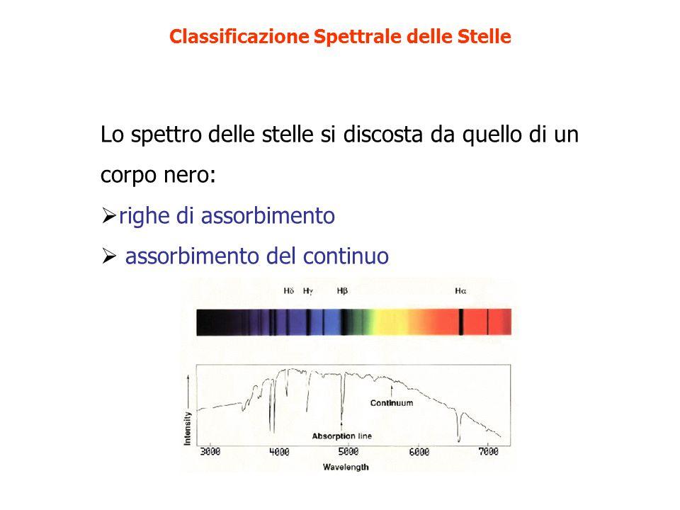 Lo spettro delle stelle si discosta da quello di un corpo nero: righe di assorbimento assorbimento del continuo Classificazione Spettrale delle Stelle