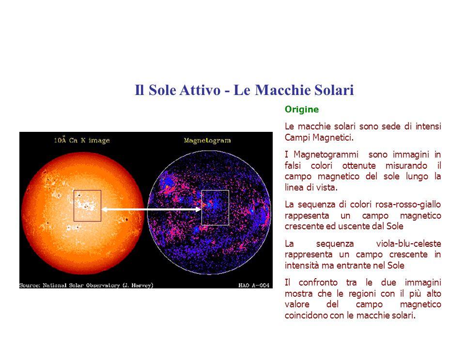 Origine Le macchie solari sono sede di intensi Campi Magnetici. I Magnetogrammi sono immagini in falsi colori ottenute misurando il campo magnetico de