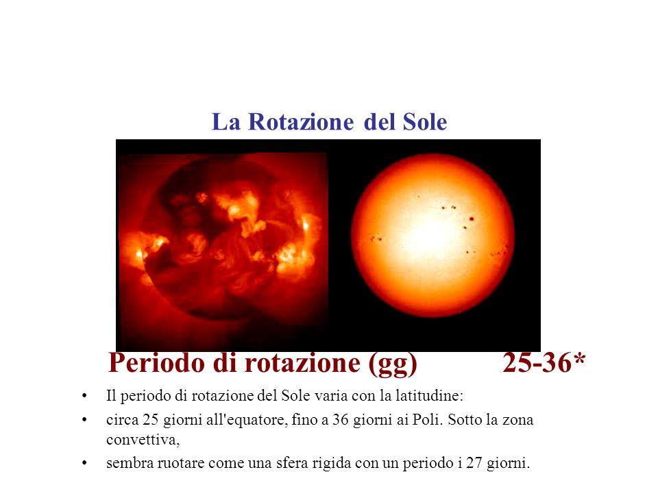 La Rotazione del Sole Periodo di rotazione (gg) 25-36* Il periodo di rotazione del Sole varia con la latitudine: circa 25 giorni all'equatore, fino a