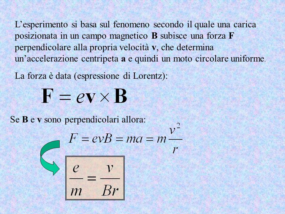 Lesperimento si basa sul fenomeno secondo il quale una carica posizionata in un campo magnetico B subisce una forza F perpendicolare alla propria velo