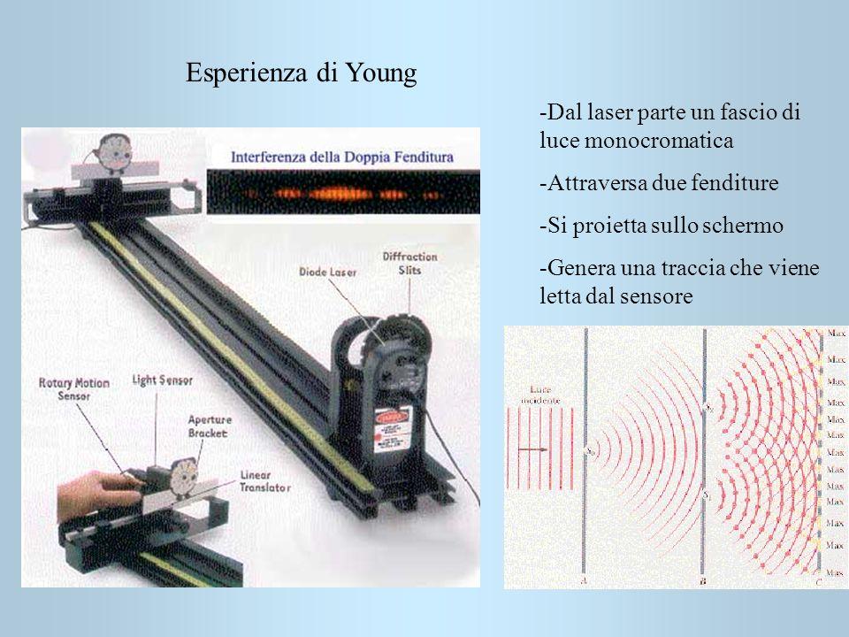 Esperienza di Young -Dal laser parte un fascio di luce monocromatica -Attraversa due fenditure -Si proietta sullo schermo -Genera una traccia che vien