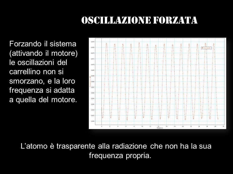 Oscillazione forzata Forzando il sistema (attivando il motore) le oscillazioni del carrellino non si smorzano, e la loro frequenza si adatta a quella