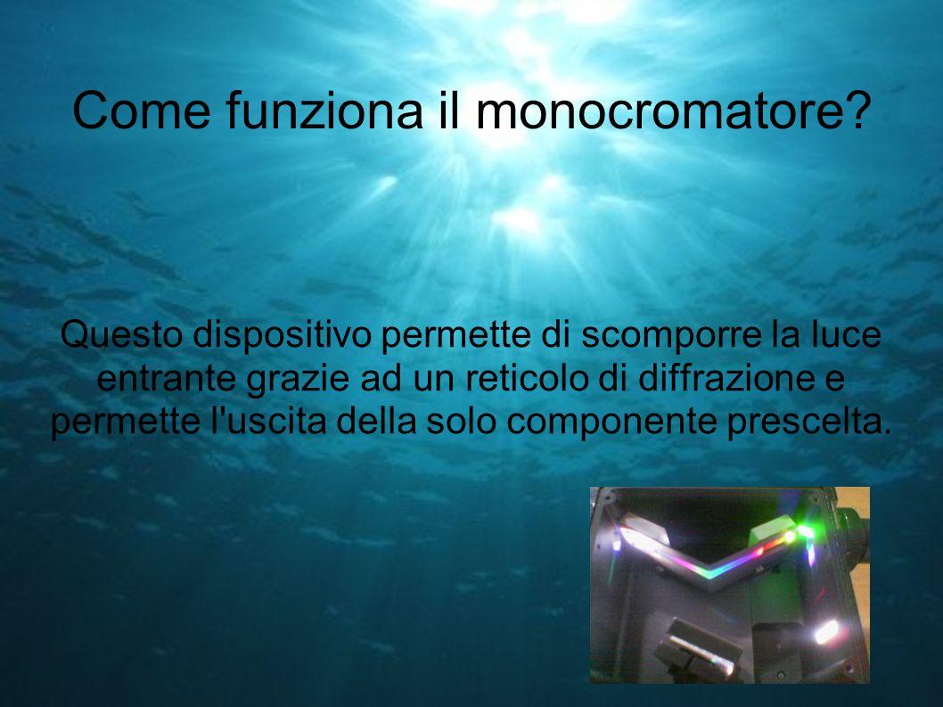 Come funziona il monocromatore? Questo dispositivo permette di scomporre la luce entrante grazie ad un reticolo di diffrazione e permette l'uscita del