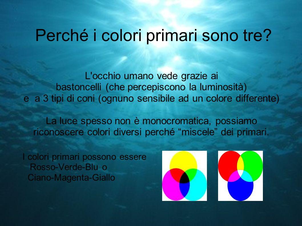 Perché i colori primari sono tre? L'occhio umano vede grazie ai bastoncelli (che percepiscono la luminosità) e a 3 tipi di coni (ognuno sensibile ad u