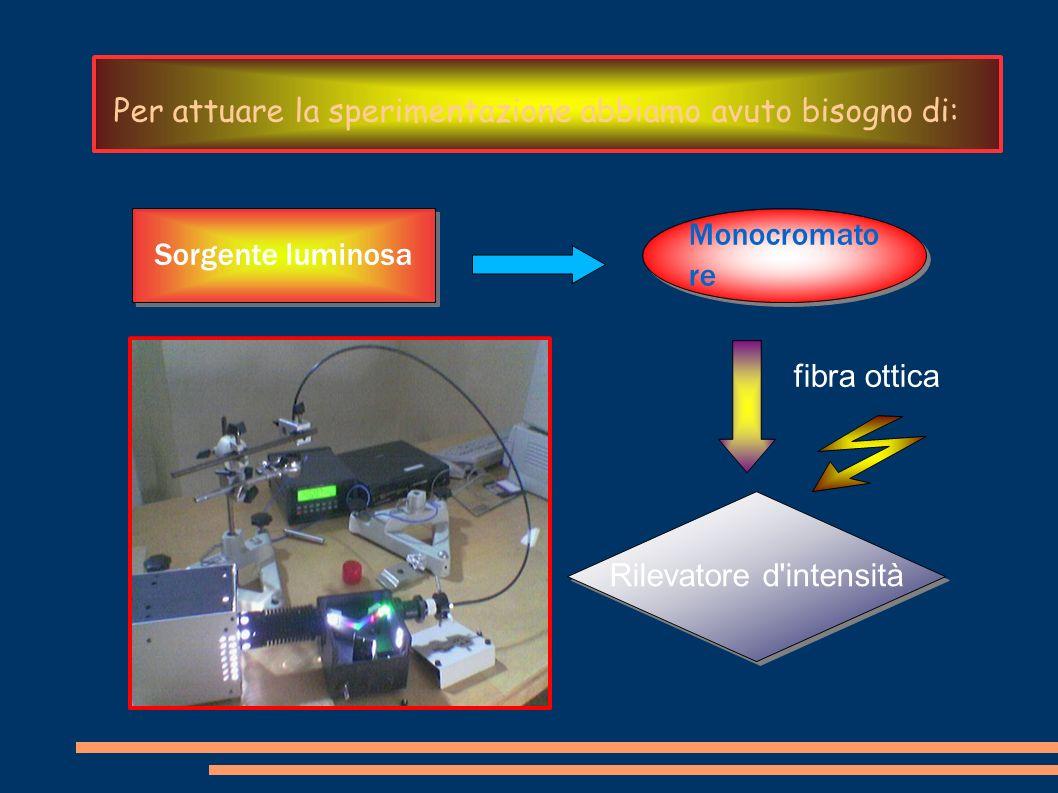 Per attuare la sperimentazione abbiamo avuto bisogno di: Sorgente luminosa Monocromato re fibra ottica Rilevatore d'intensità