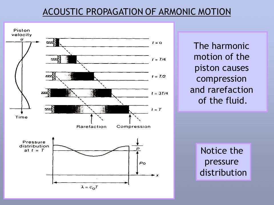 ACOUSTIC PROPAGATION OF ARMONIC MOTION The harmonic motion of the piston causes compression and rarefaction of the fluid.