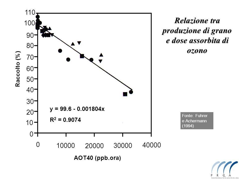 A livello cellulare alterazione della permeabilità della membrana Stress osmotico alterazione dei percorsi metabolici / riduzione efficienza Stress ossidativo distruzione delle biomolecole (clorofille comprese) inibizione della fotosintesi perdita di funzionalità degli organelli