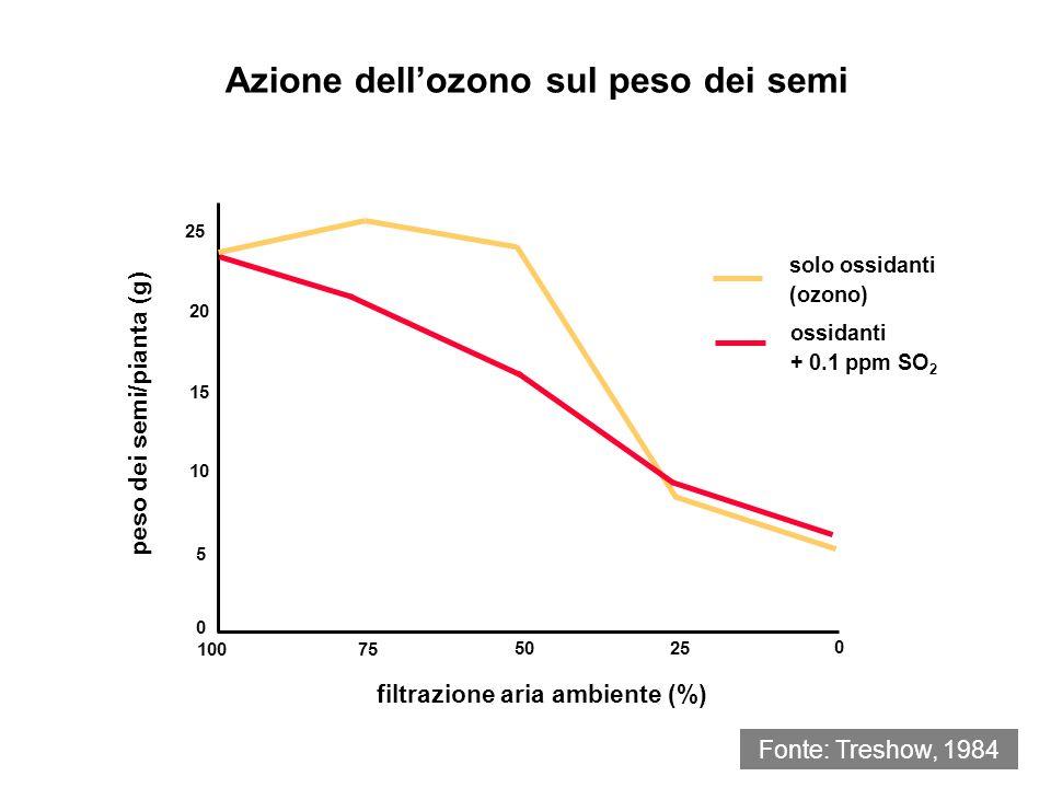 Fonte: Hegle & Heck, 1980 Azione dellozono sulle rese di piante coltivate Concentrazione stagionale di ozono (7h/giorno - ppm) 0 5 15 10 20 peso dei semi/4 piante (g) FRUMENTO INVERNALE - OASIS 00.05 0.10 0.15 0.10 100 peso dei semi/pianta (g) SOIA - DAVIS 0 0.050.15 0 40 60 80 peso fresco germoglio/pianta (g) SPINACIO - IBRIDO 7 0 0.05 0.10 0.15 40 30 20 10 0 peso dei semi/pianta (g) MAIS DI CAMPO - COCKER 16 250 200 150 100 0 00.05 0.10 0.15