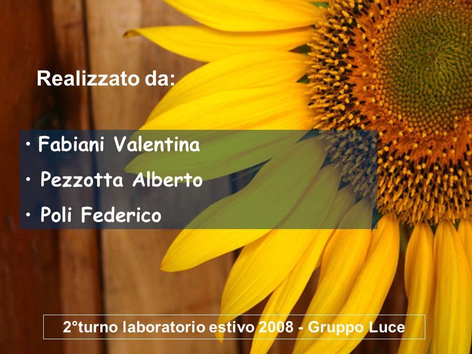 Fabiani Valentina Pezzotta Alberto Poli Federico Realizzato da: 2°turno laboratorio estivo 2008 - Gruppo Luce
