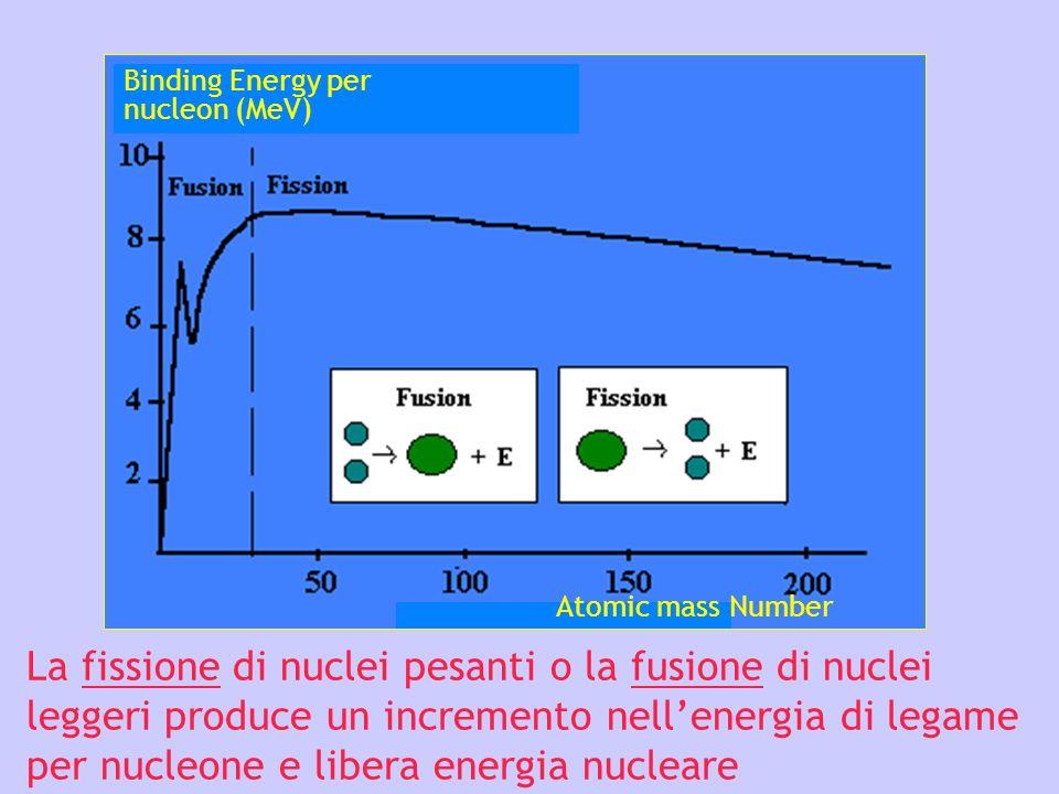 La fissione di nuclei pesanti o la fusione di nuclei leggeri produce un incremento nellenergia di legame per nucleone e libera energia nucleare Bindin