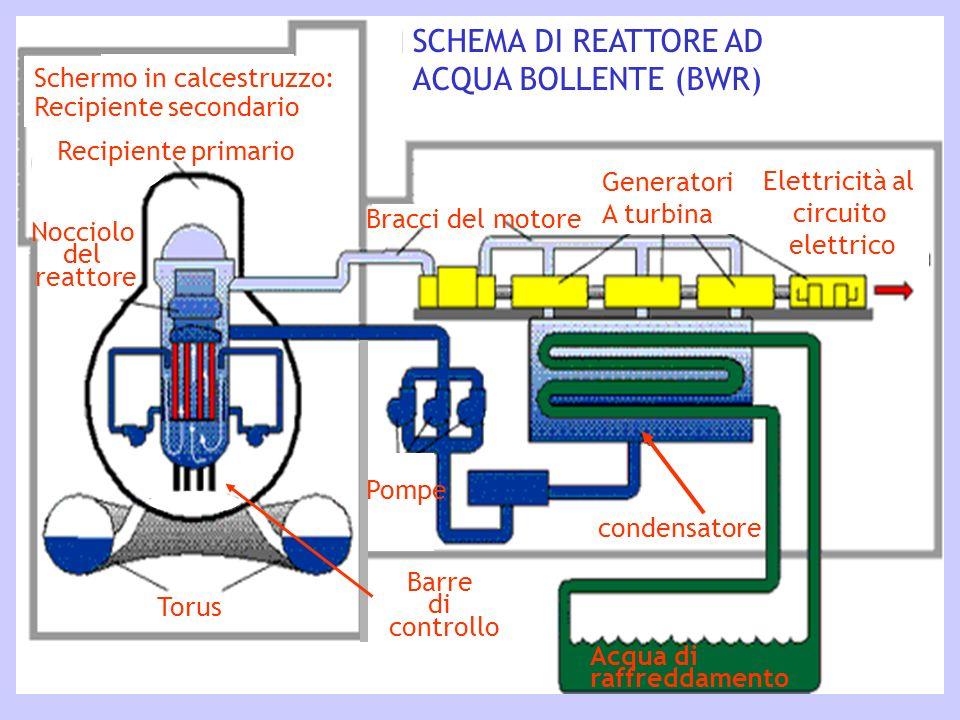 Schermo in calcestruzzo: Recipiente secondario SCHEMA DI REATTORE AD ACQUA BOLLENTE (BWR) Torus Nocciolo del reattore Barre di controllo Recipiente pr