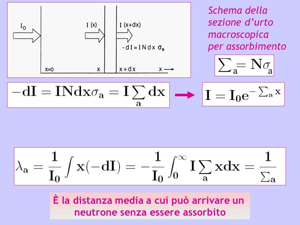 Schema della sezione durto macroscopica per assorbimento È la distanza media a cui può arrivare un neutrone senza essere assorbito aa