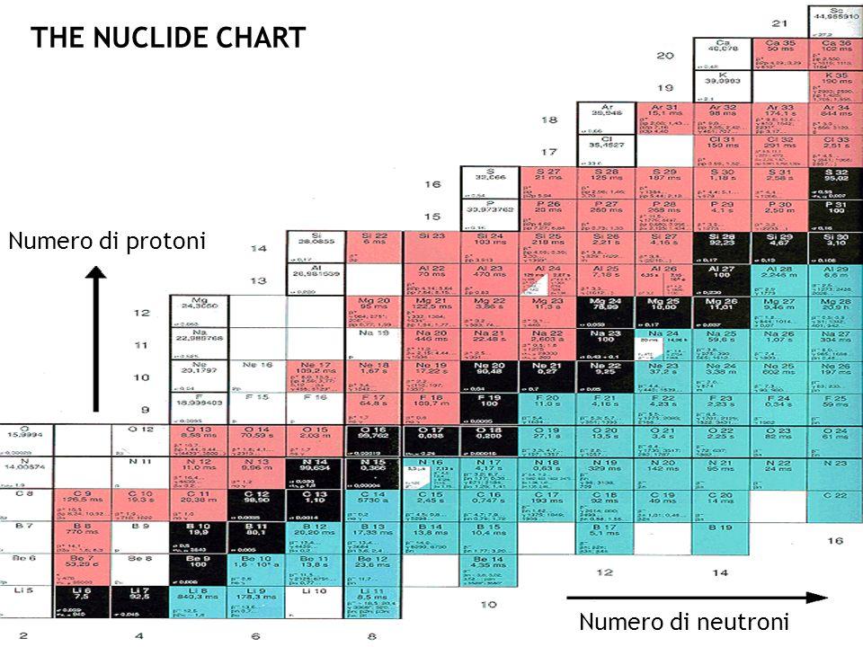Numero di neutroni Numero di protoni THE NUCLIDE CHART