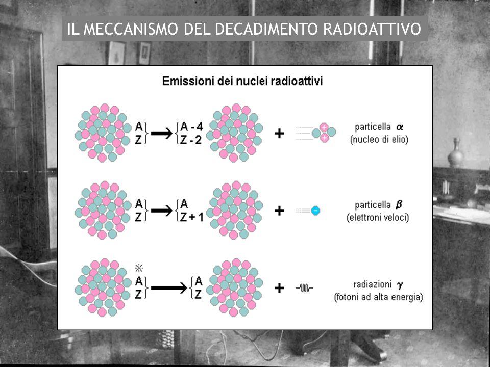 IL MECCANISMO DEL DECADIMENTO RADIOATTIVO