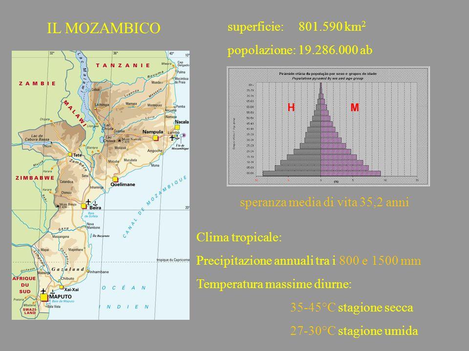 IL MOZAMBICO superficie: 801.590 km 2 popolazione: 19.286.000 ab speranza media di vita 35,2 anni Clima tropicale: Precipitazione annuali tra i 800 e