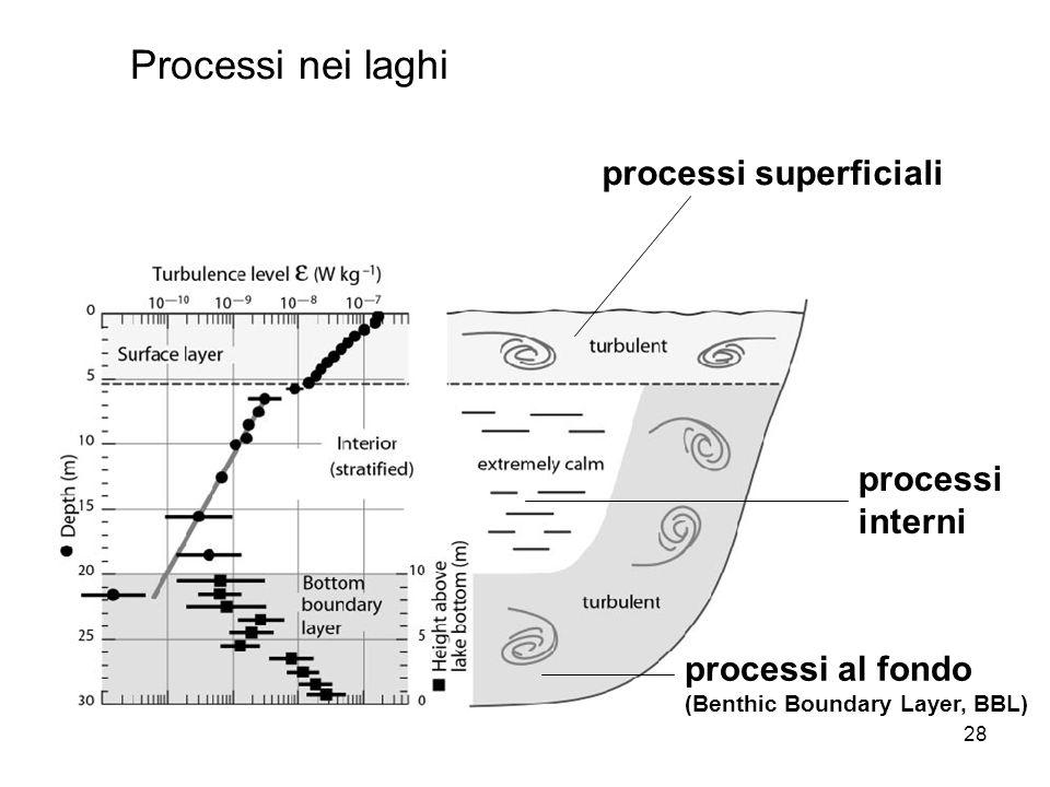 28 Processi nei laghi processi superficiali processi interni processi al fondo (Benthic Boundary Layer, BBL)