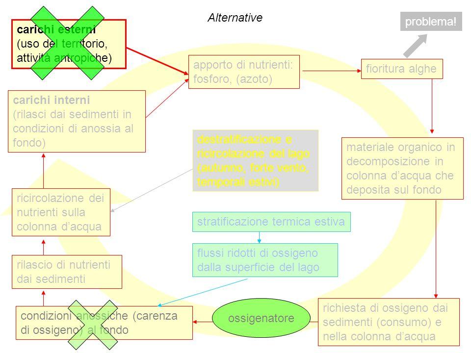 60 Alternative carichi esterni (uso del territorio, attività antropiche) apporto di nutrienti: fosforo, (azoto) fioritura alghe carichi interni (rilas