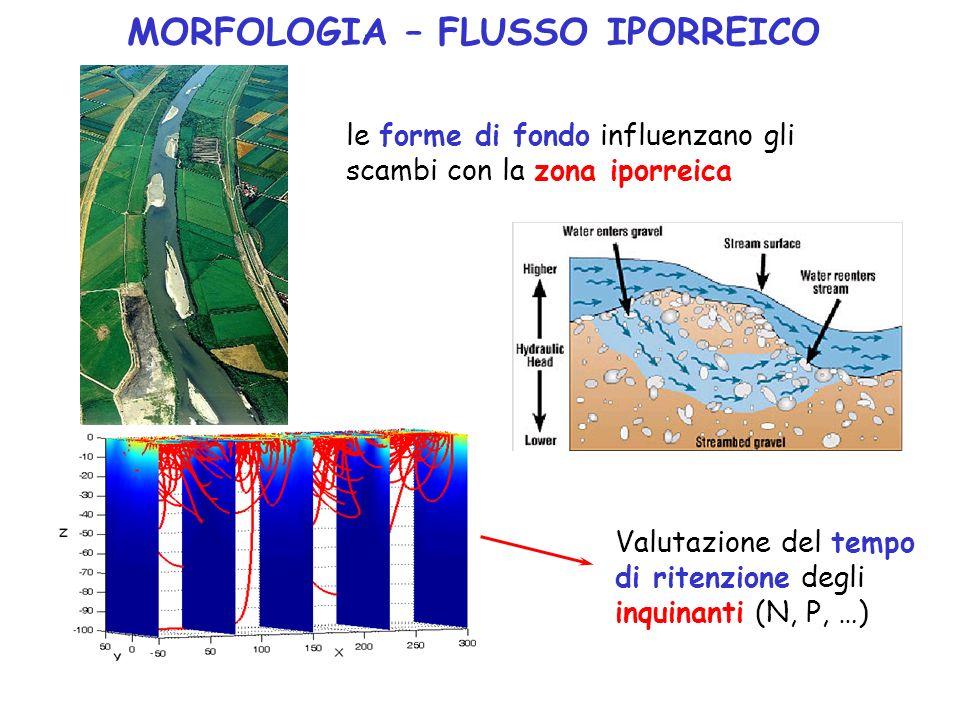 MORFOLOGIA – FLUSSO IPORREICO le forme di fondo influenzano gli scambi con la zona iporreica Valutazione del tempo di ritenzione degli inquinanti (N,