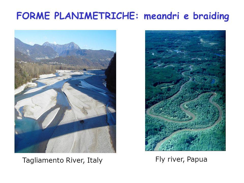 FORME PLANIMETRICHE: meandri e braiding Tagliamento River, Italy Fly river, Papua