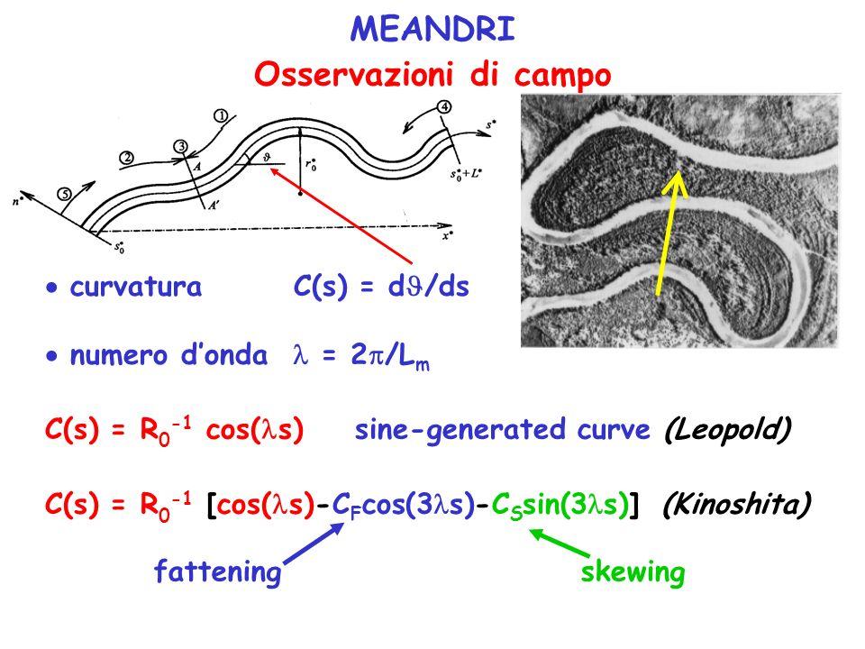 MEANDRI Osservazioni di campo curvatura C(s) = d /ds numero donda = 2 /L m C(s) = R 0 -1 cos( s) sine-generated curve (Leopold) C(s) = R 0 -1 [cos( s)