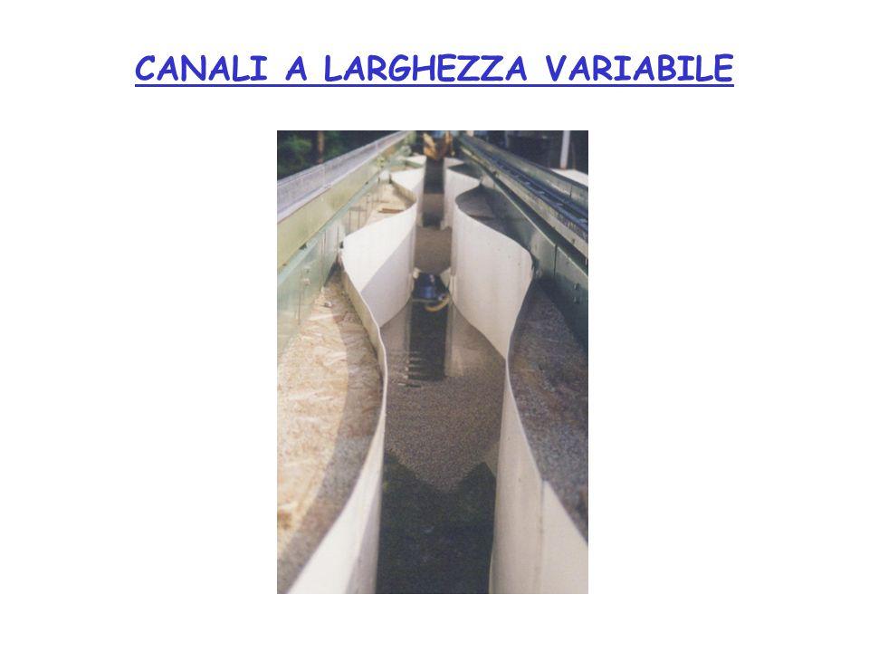 CANALI A LARGHEZZA VARIABILE