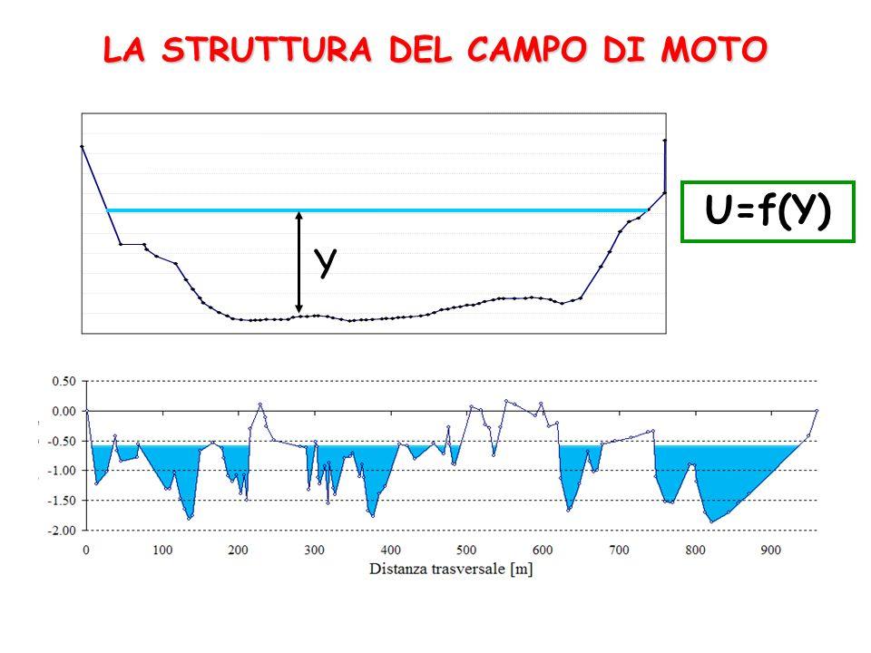LA STRUTTURA DEL CAMPO DI MOTO Y U=f(Y)